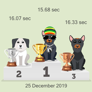 cryptocurrency pet racing