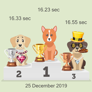 Bitcoin canine racing results