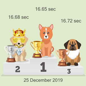 Litecoin doggy racing photo