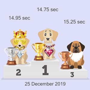 online pet race