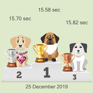 cryptocurrency pet race