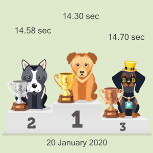 cryptocurrency dog racing