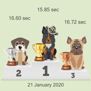 virtual dog race
