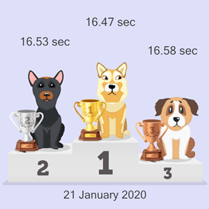 crypto pet race