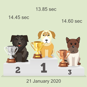 Litecoin dog racing