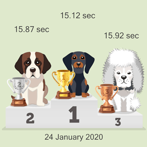 online dog race photo