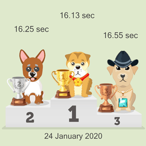 cryptocurrency dog race