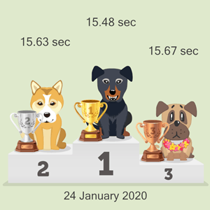virtual dog race results