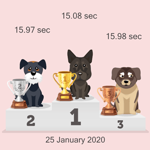online doggy race podium