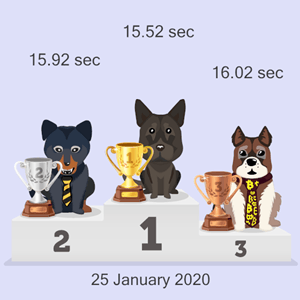 crypto doggy race results