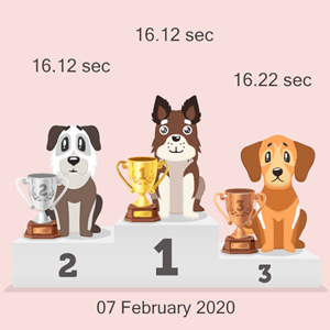 cryptocurrency canine race podium