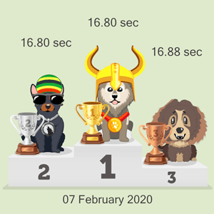 crypto dog racing results