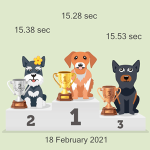 Bitcoin pet racing photo