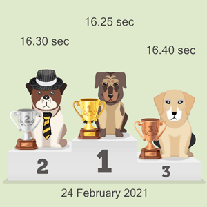 cryptocurrency doggy race