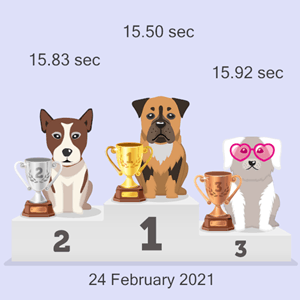 crypto dog race photo